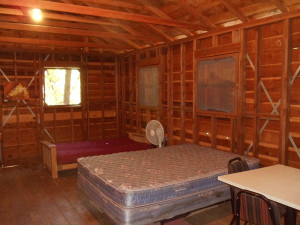 Pine Cabin Interior