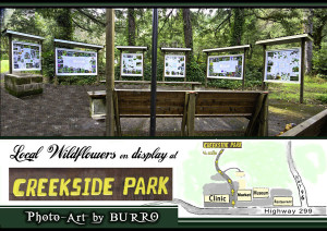 Creekside Park Nature Center