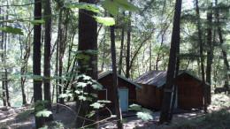 Cedar and Pine Cabins
