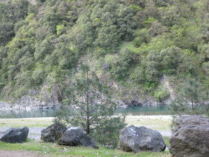 Kimtu Beach Trees and River