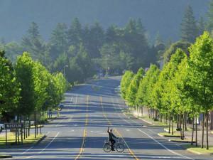 Highway 299