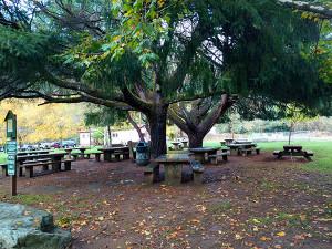 Veterans Park Tables